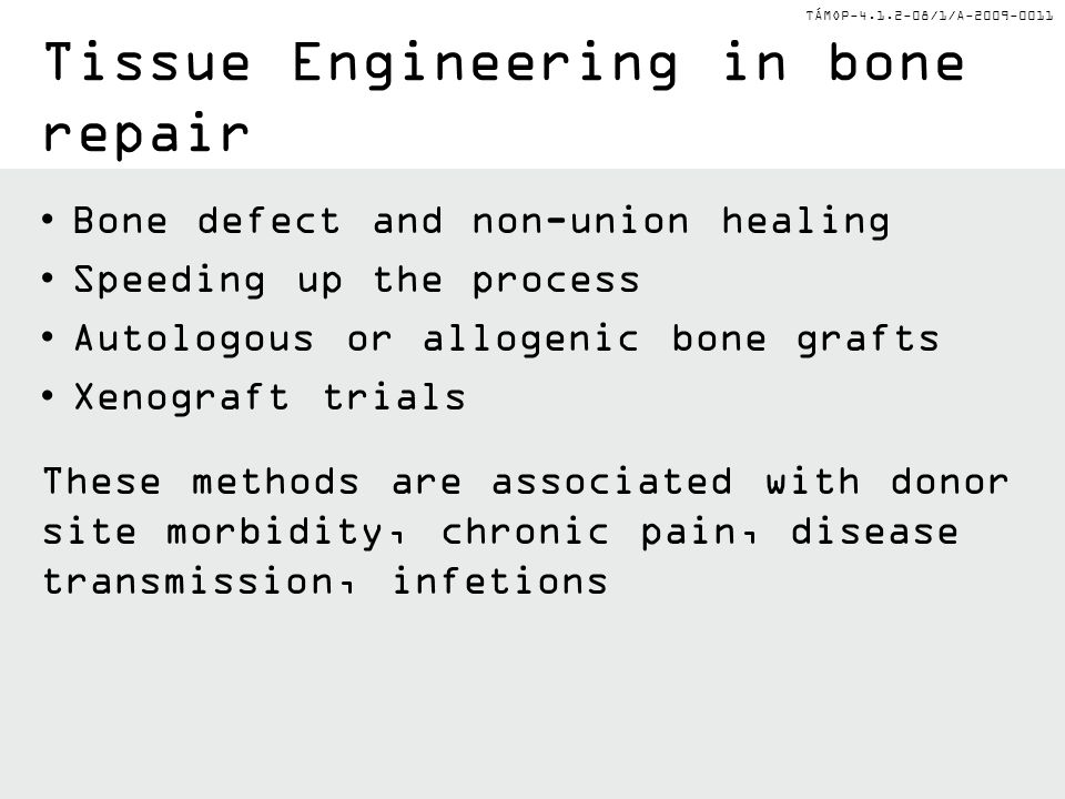 Tissue Engineering in bone repair