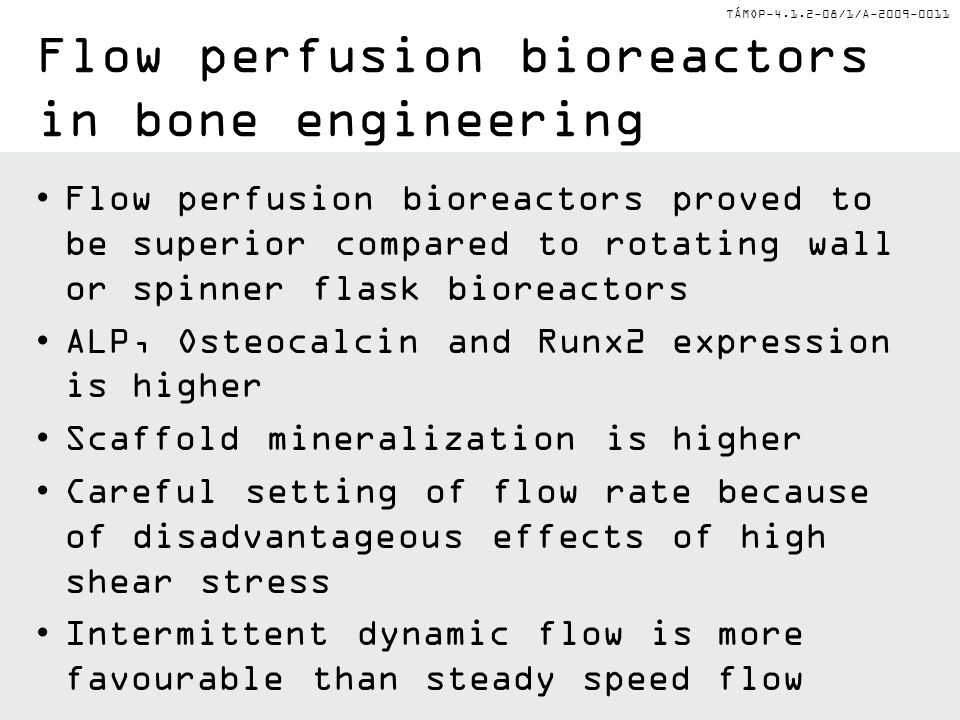 Flow perfusion bioreactors in bone engineering