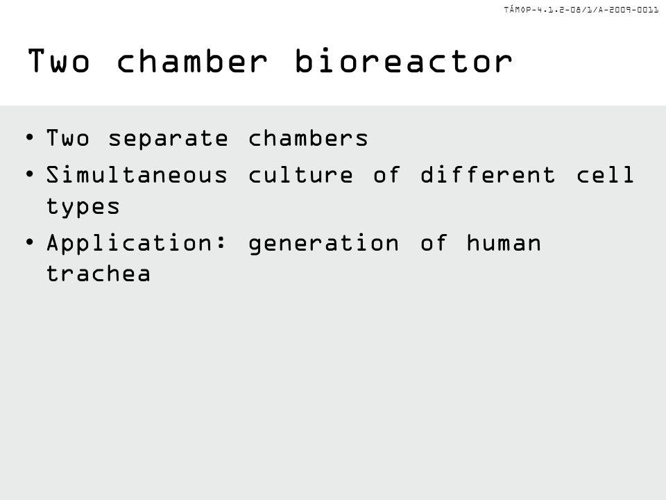 Two chamber bioreactor