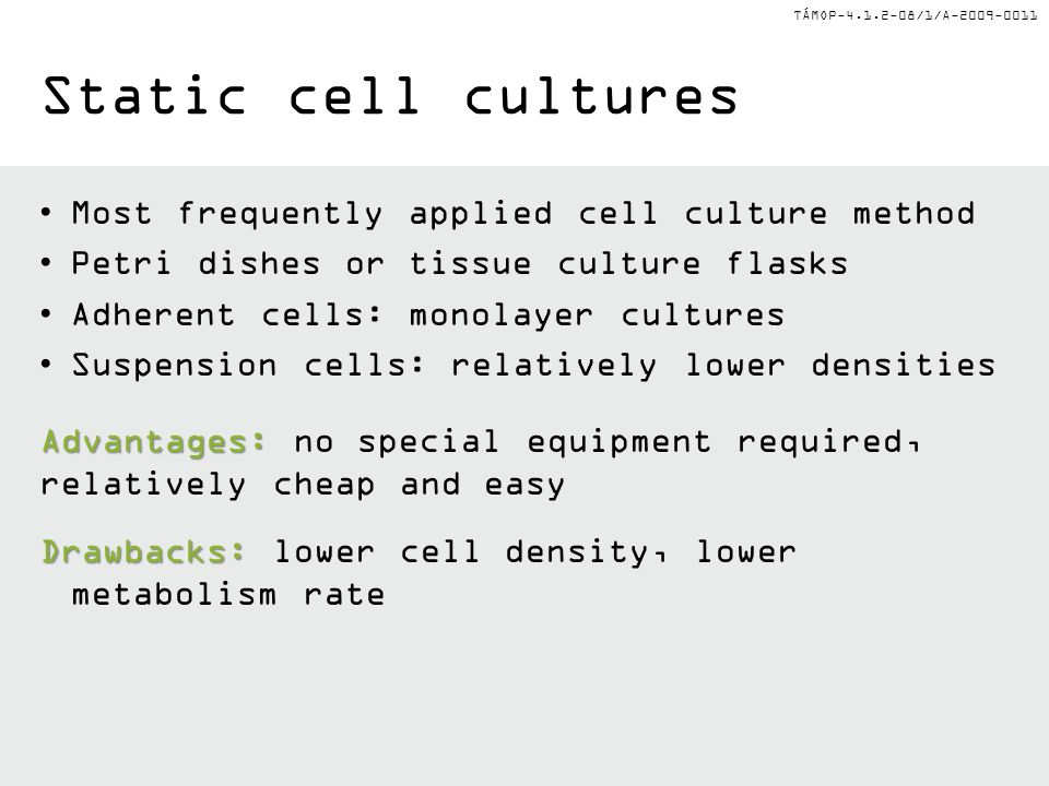 Static cell cultures Most frequently applied cell culture method