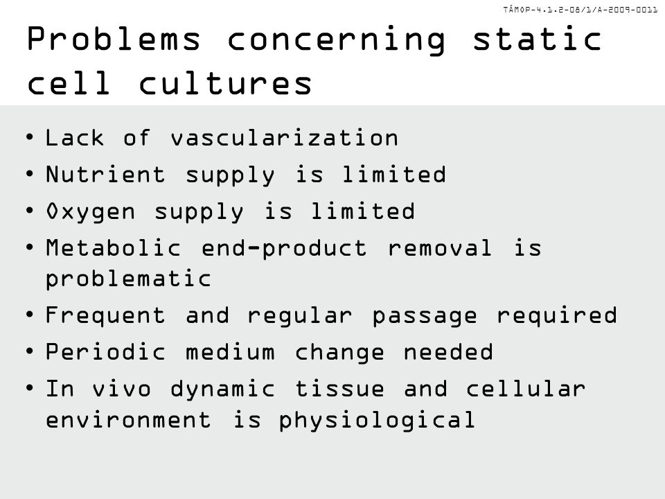 Problems concerning static cell cultures