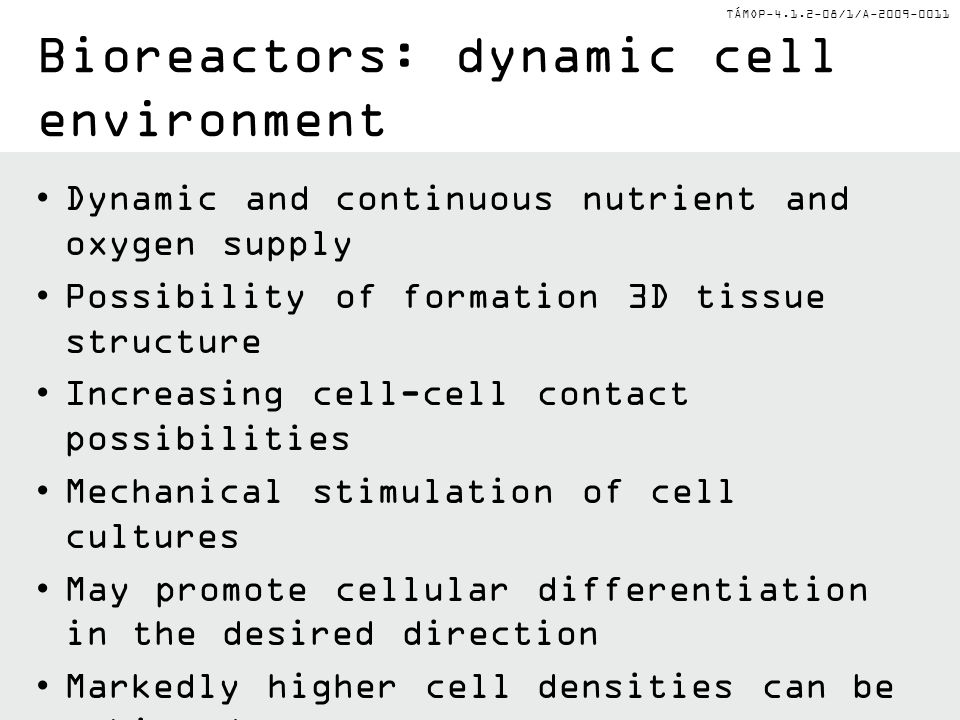 Bioreactors: dynamic cell environment