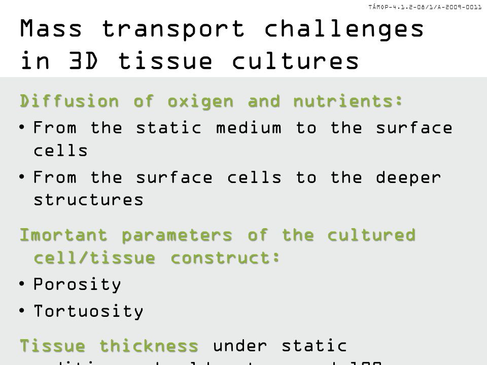 Mass transport challenges in 3D tissue cultures