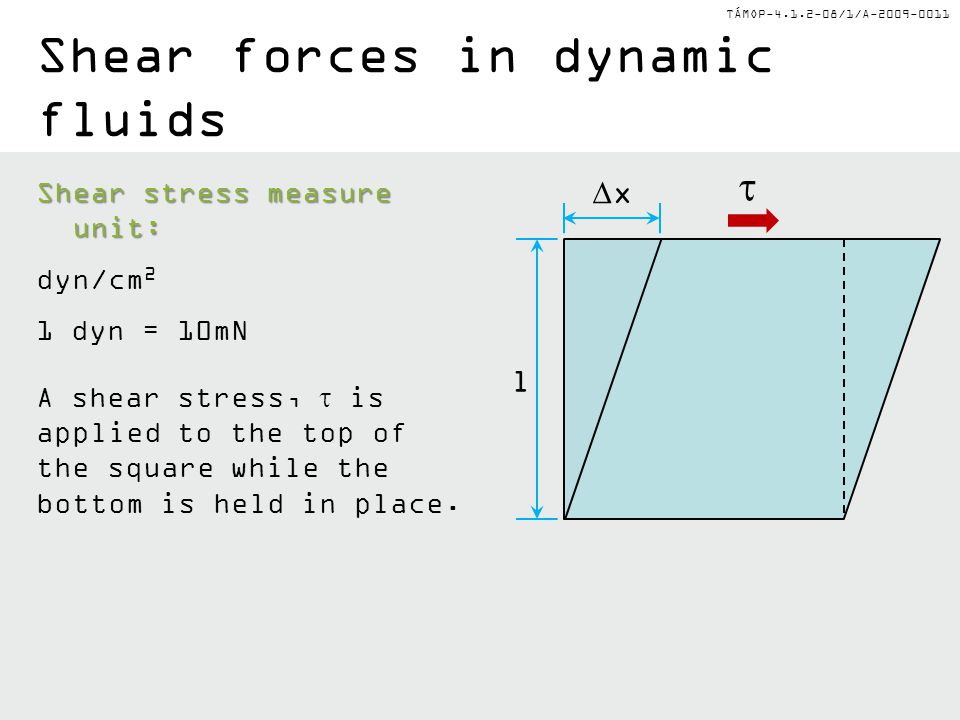Shear forces in dynamic fluids