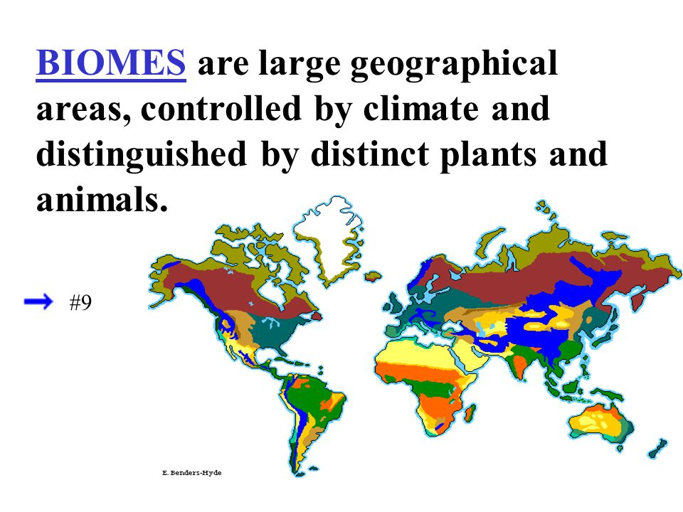 BIOMES are large geographical areas, controlled by climate and distinguished by distinct plants and animals.