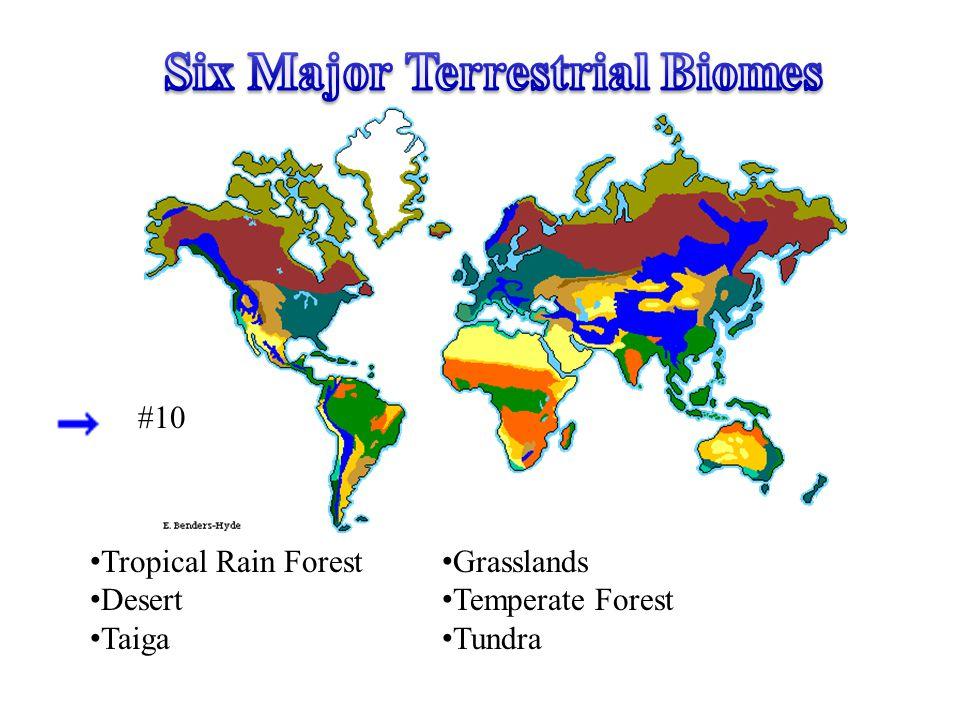 Six Major Terrestrial Biomes
