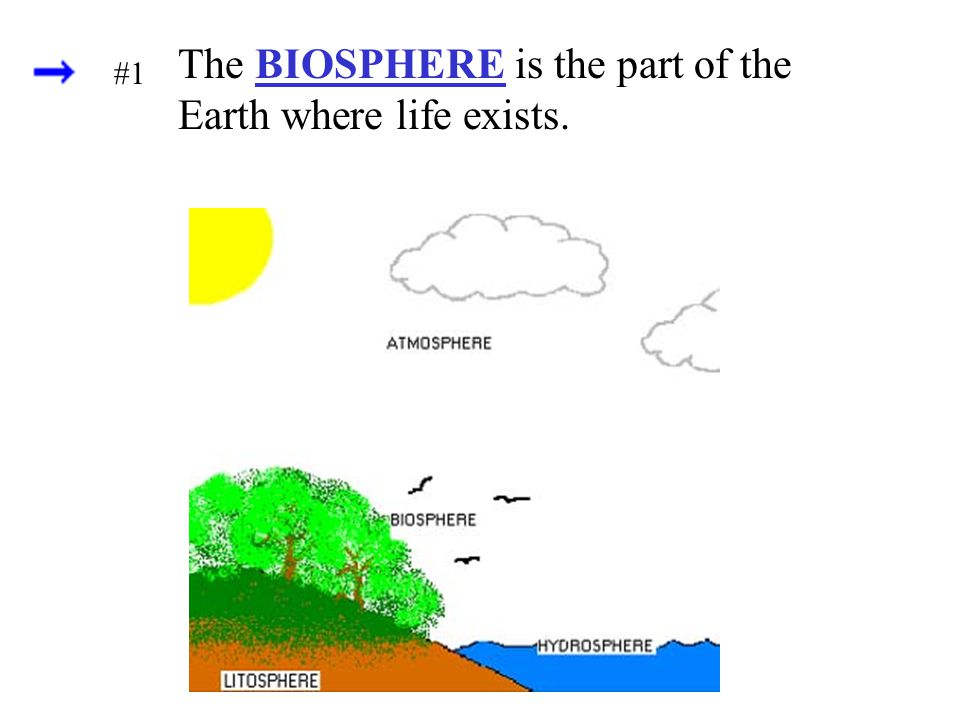 The BIOSPHERE is the part of the Earth where life exists.