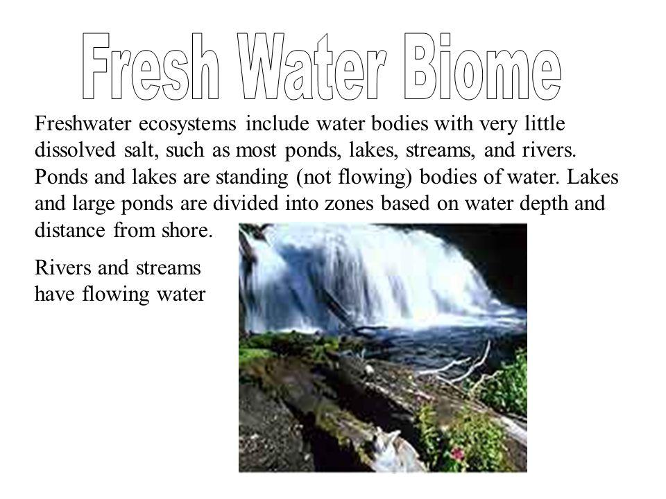 Fresh Water Biome
