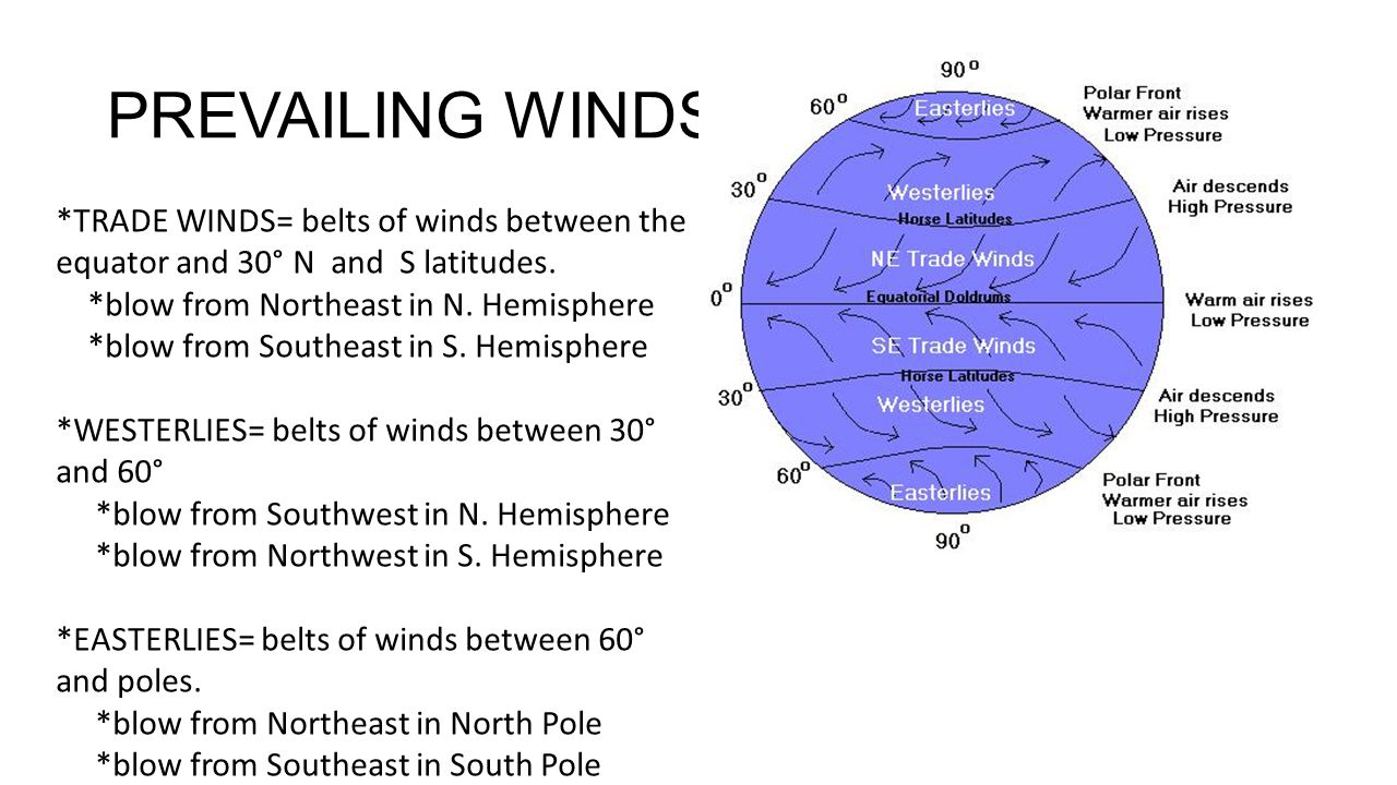PREVAILING WINDS *TRADE WINDS= belts of winds between the equator and 30° N and S latitudes. *blow from Northeast in N. Hemisphere.