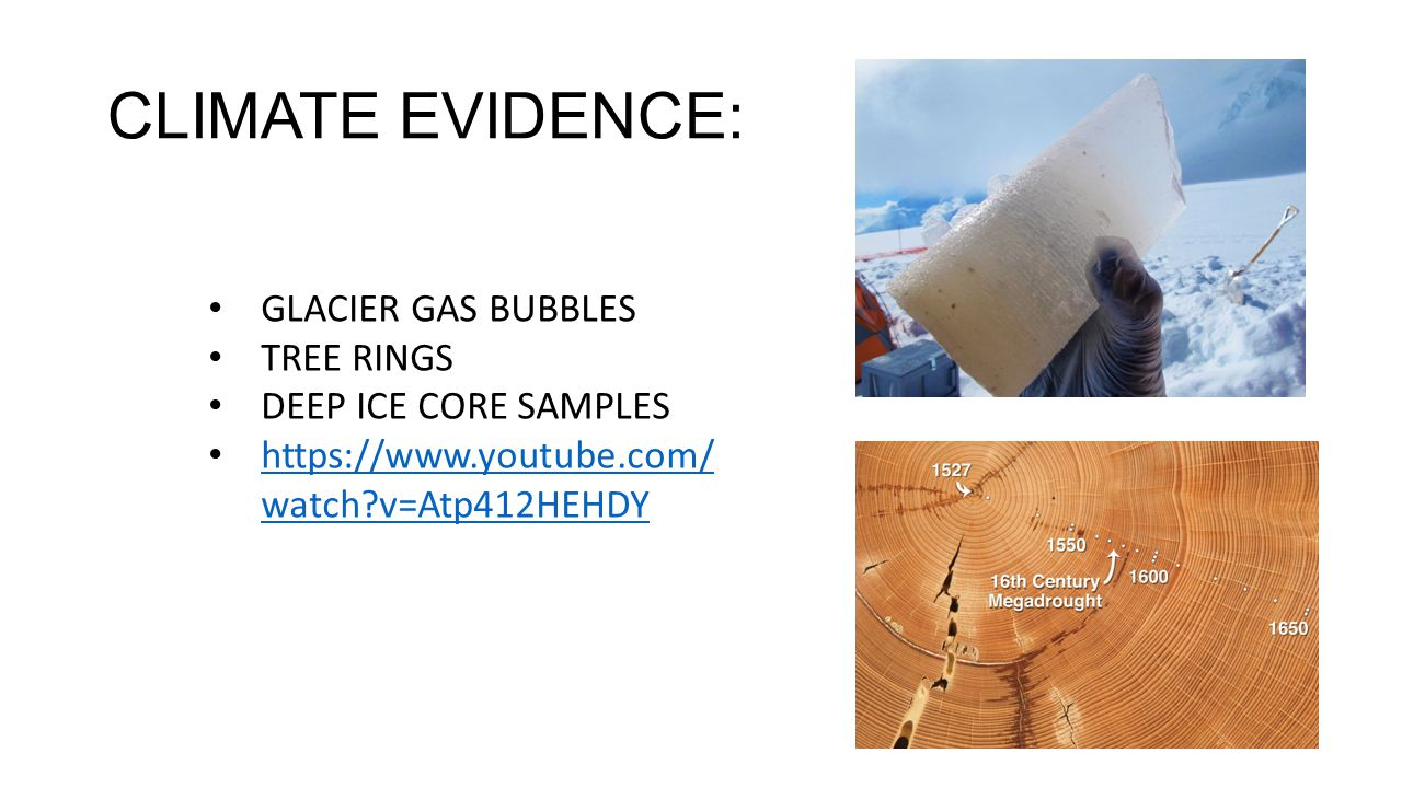 CLIMATE EVIDENCE: GLACIER GAS BUBBLES TREE RINGS DEEP ICE CORE SAMPLES