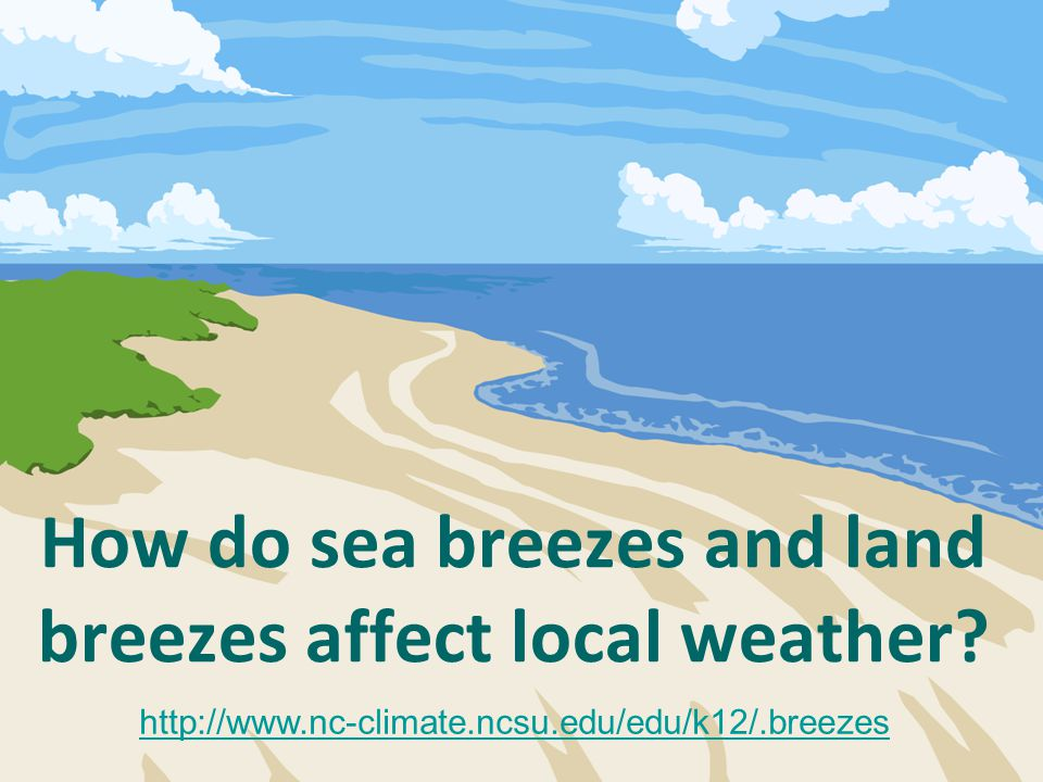 How do sea breezes and land breezes affect local weather