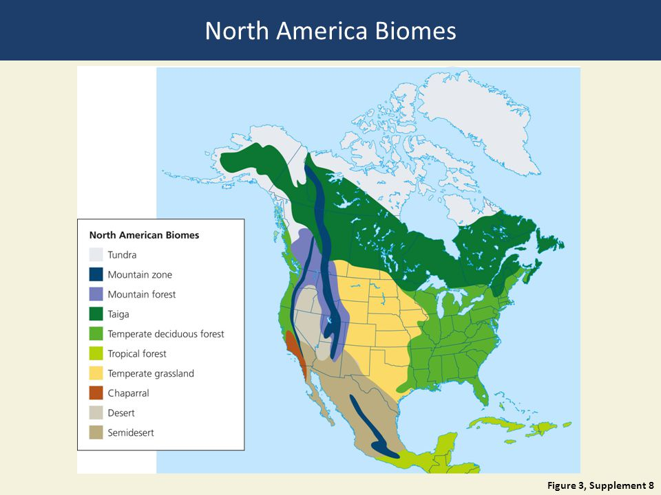 North America Biomes Figure 3, Supplement 8