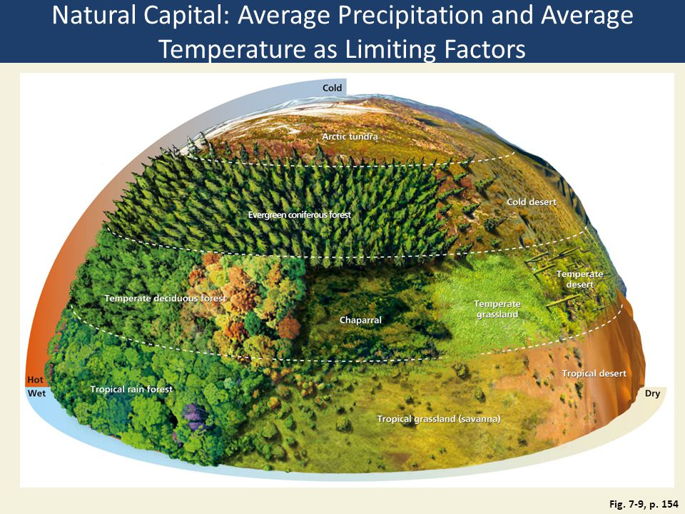 Natural Capital: Average Precipitation and Average Temperature as Limiting Factors
