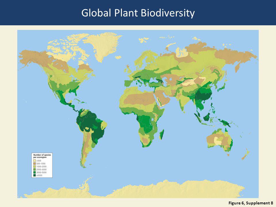 Global Plant Biodiversity