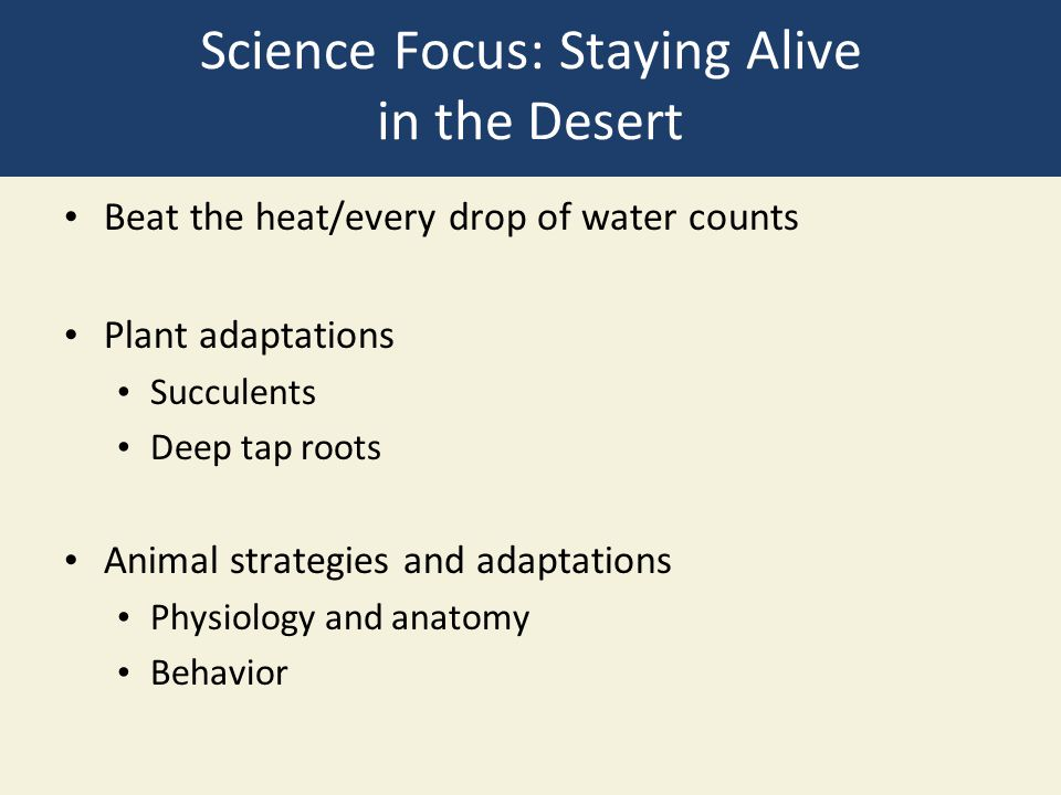 Science Focus: Staying Alive in the Desert
