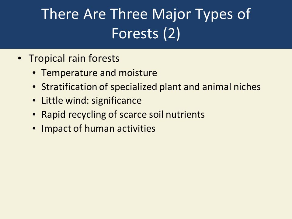 There Are Three Major Types of Forests (2)