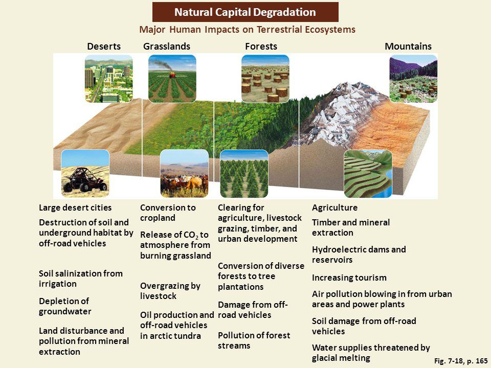 Natural Capital Degradation