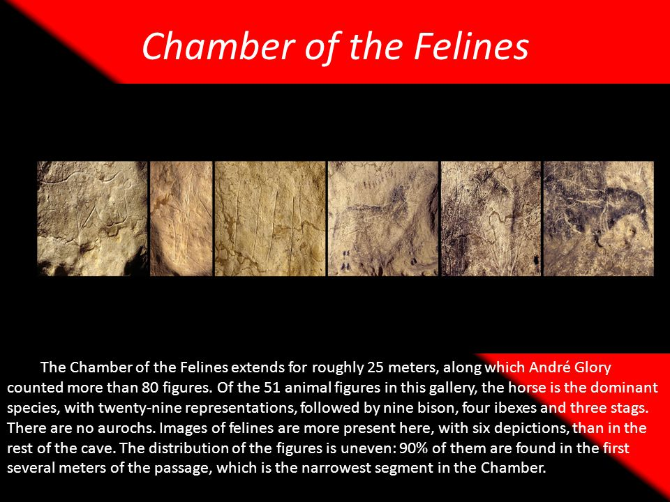 Chamber of the Felines
