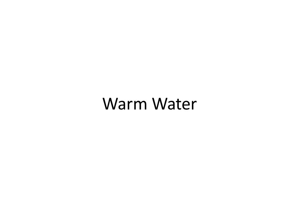 Warm Water