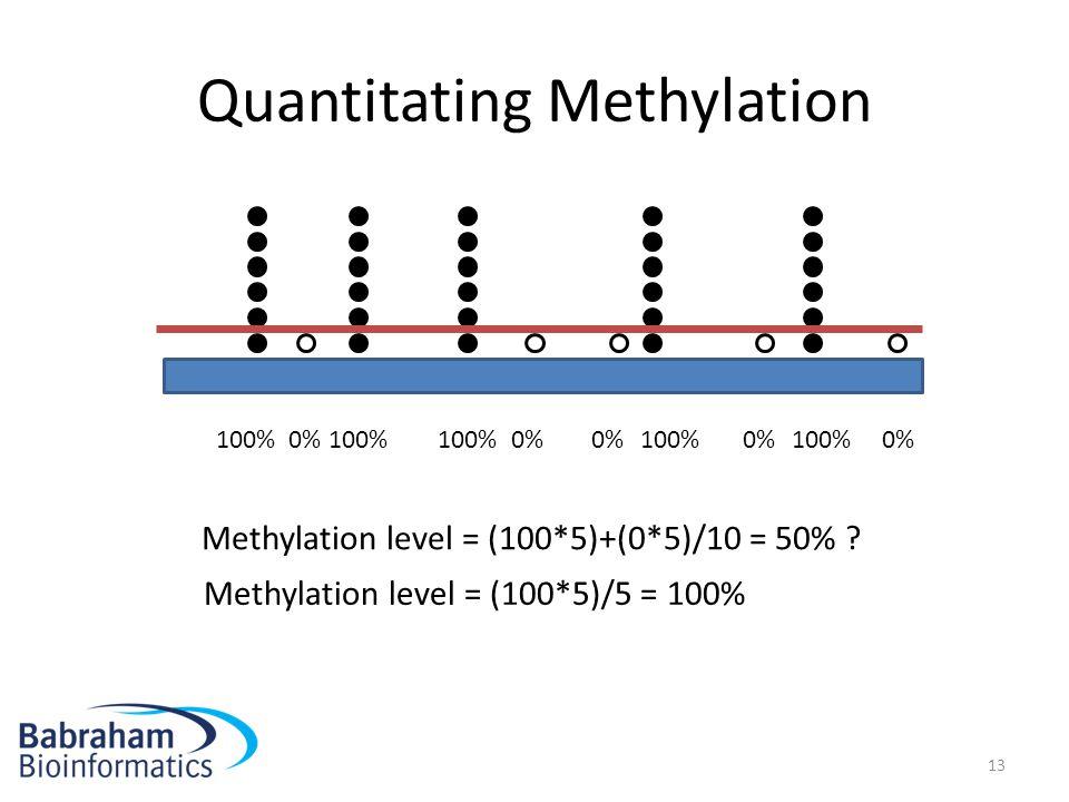Quantitating Methylation
