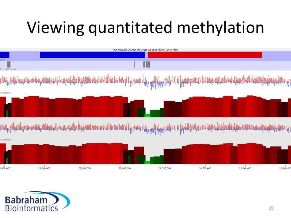 Viewing quantitated methylation