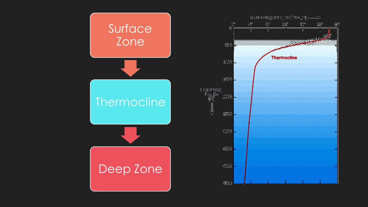 Surface Zone Thermocline Deep Zone