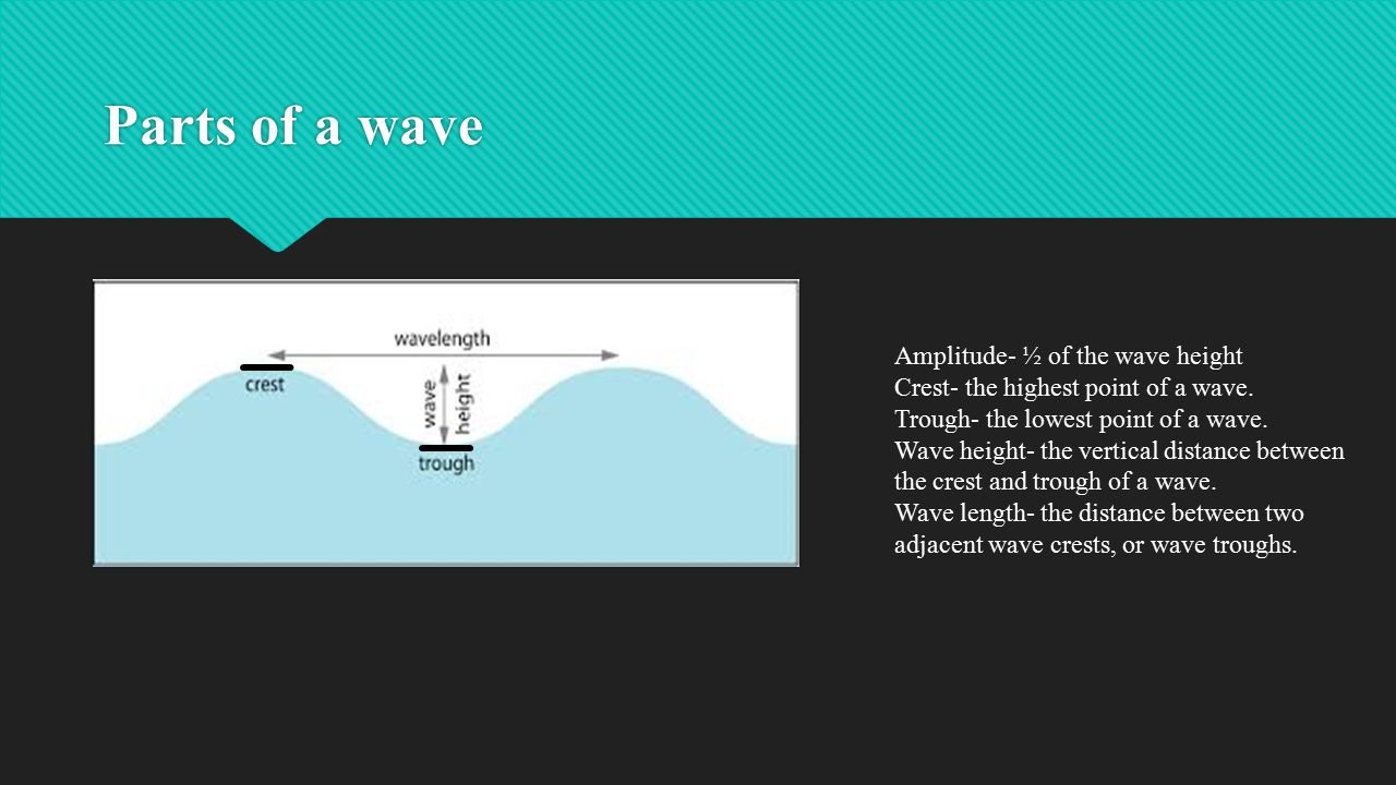 Parts of a wave Amplitude- ½ of the wave height