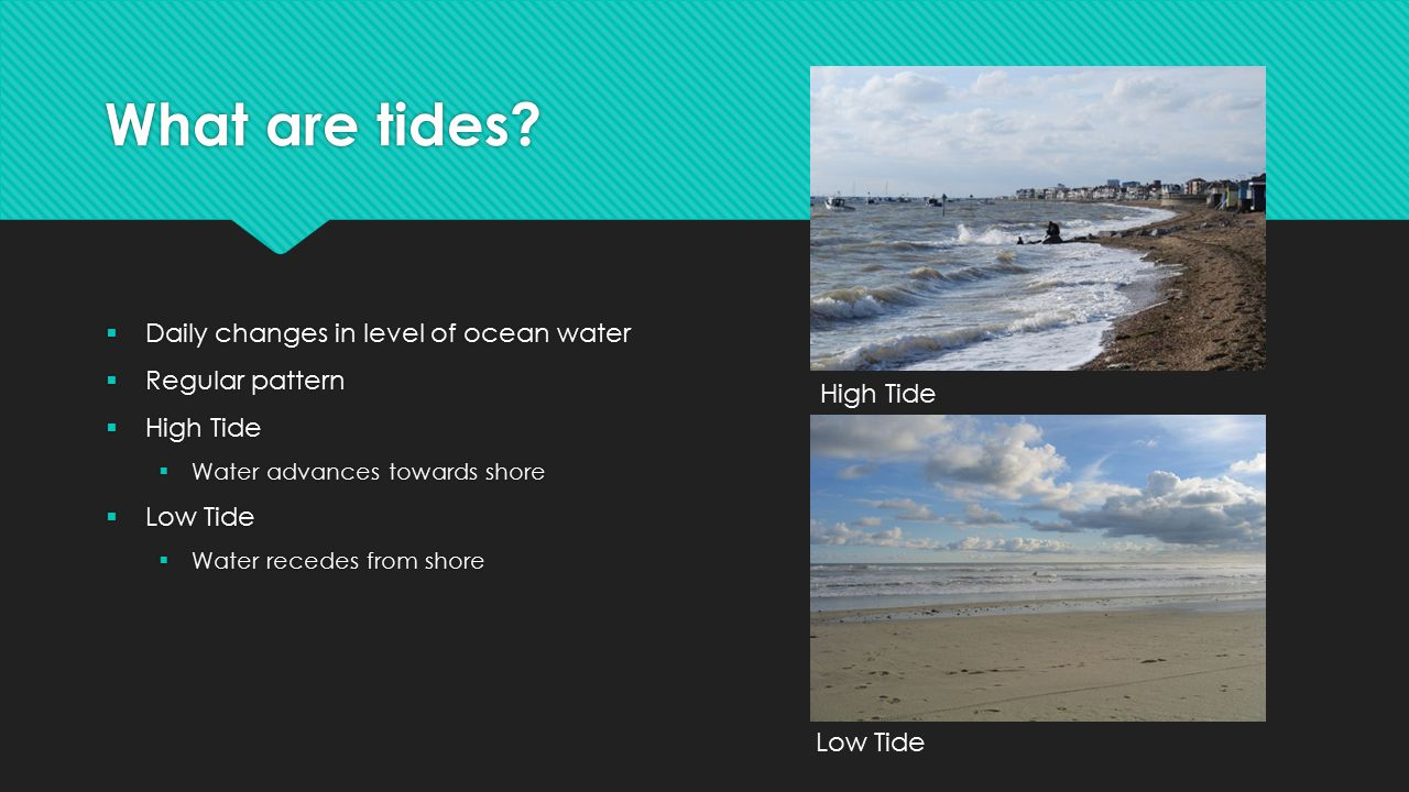 What are tides High Tide Daily changes in level of ocean water