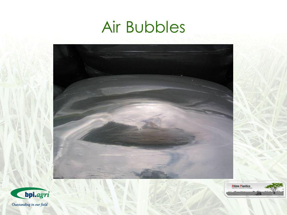 Air Bubbles 45