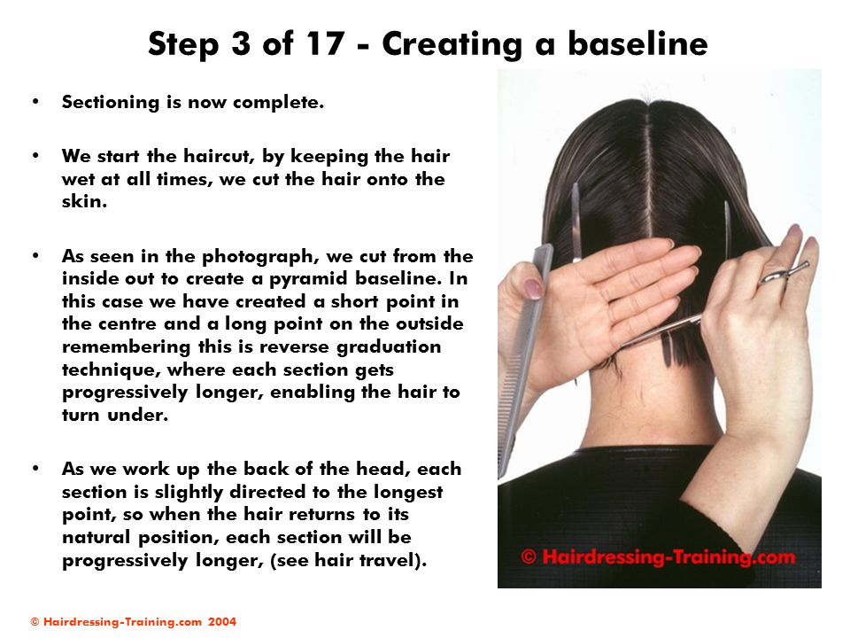 Step 3 of 17 - Creating a baseline