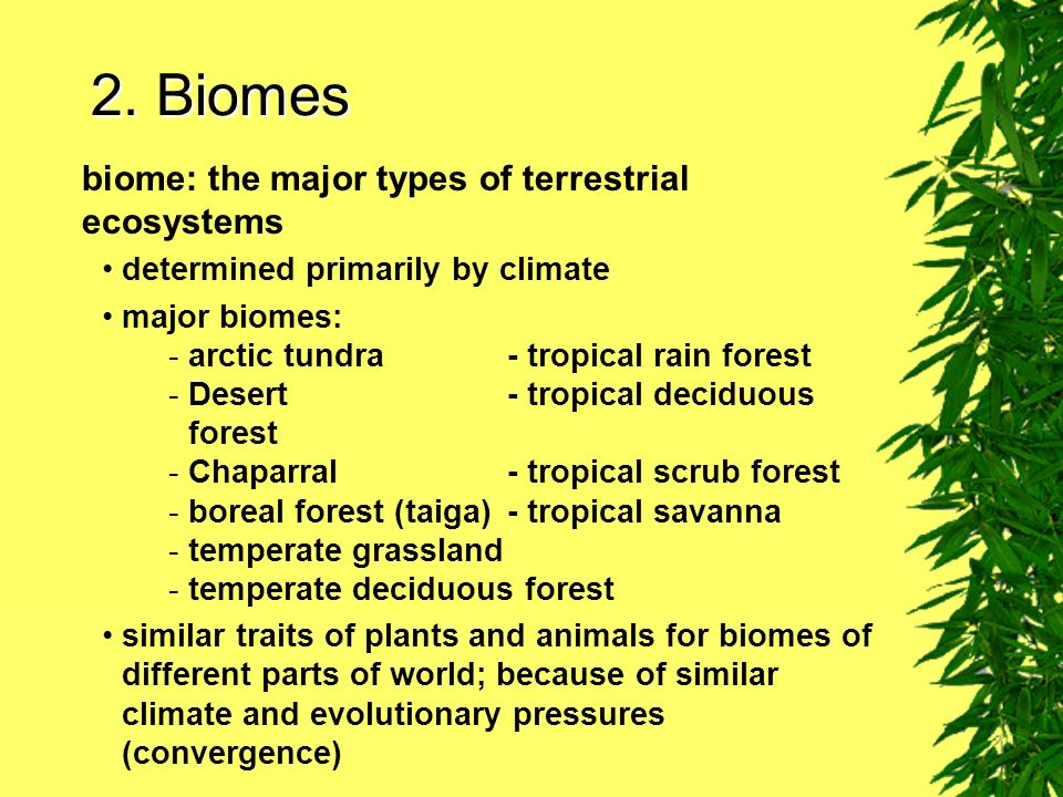2. Biomes biome: the major types of terrestrial ecosystems
