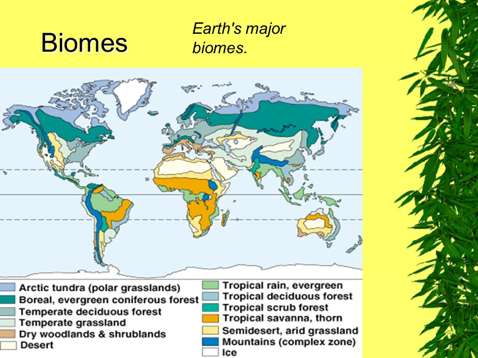 Earth s major biomes. Biomes Fig. 7–11
