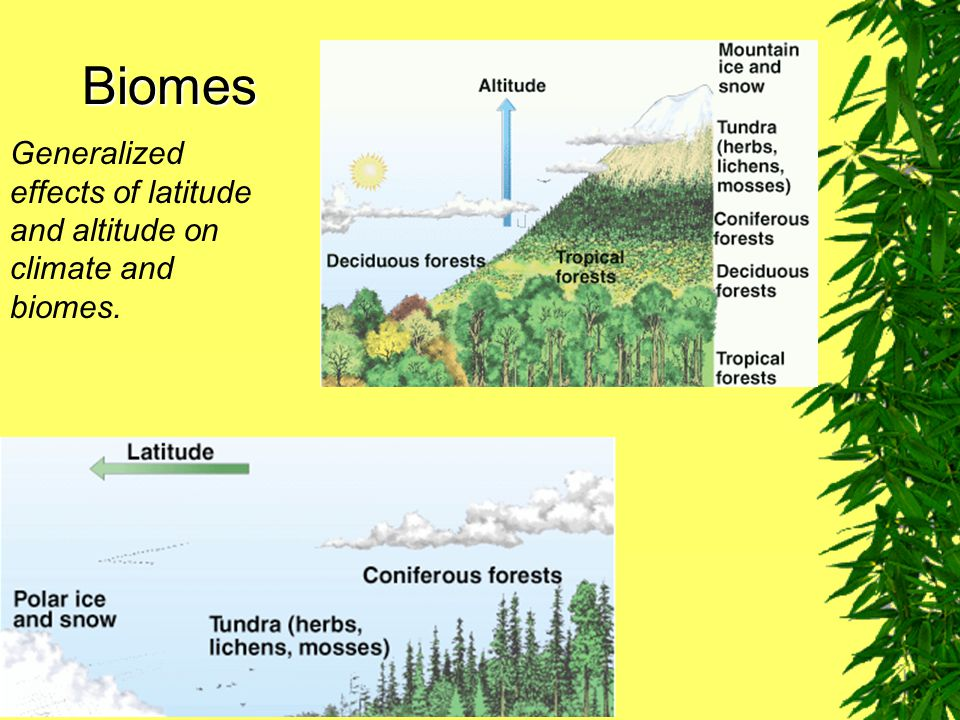 Biomes Generalized effects of latitude and altitude on climate and biomes. Fig. 7–13