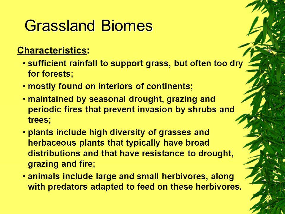 Grassland Biomes Characteristics: