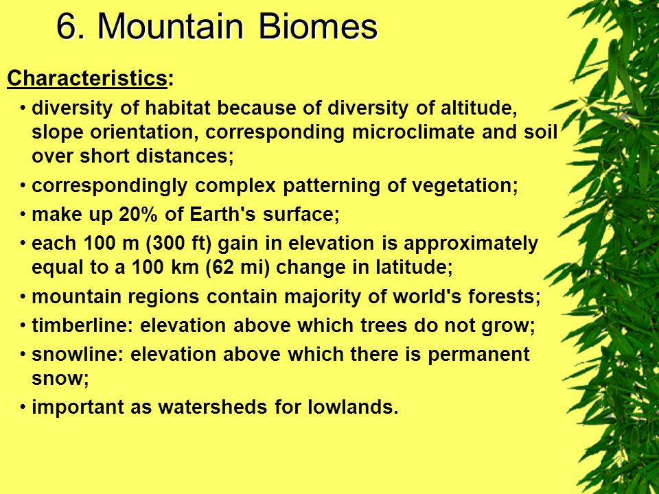 6. Mountain Biomes Characteristics:
