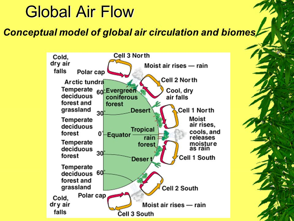 Global Air Flow Conceptual model of global air circulation and biomes.