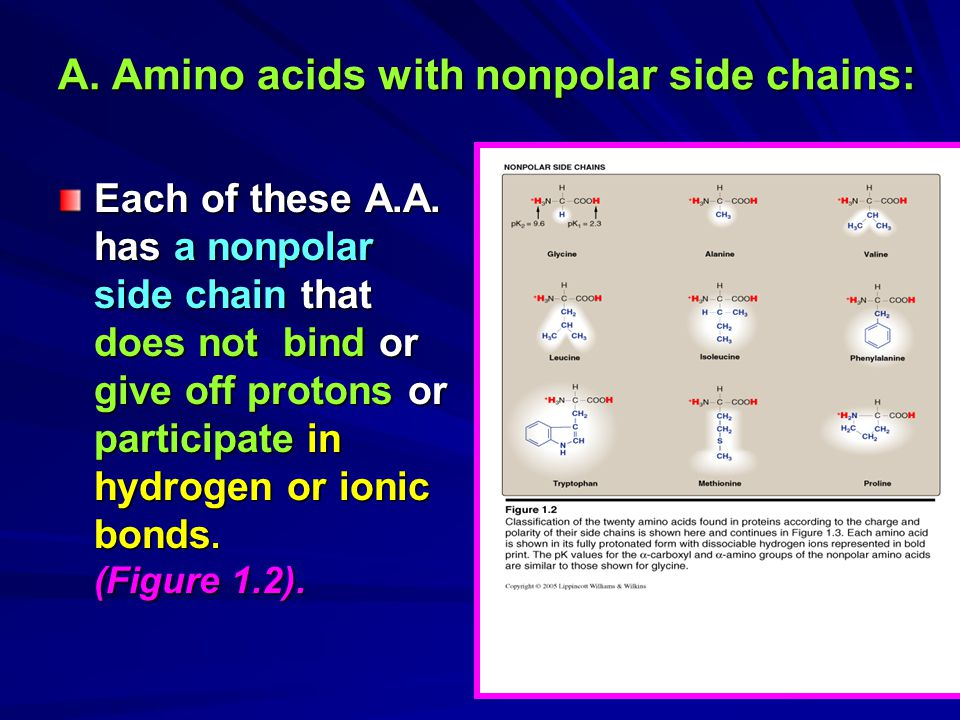 A. Amino acids with nonpolar side chains: