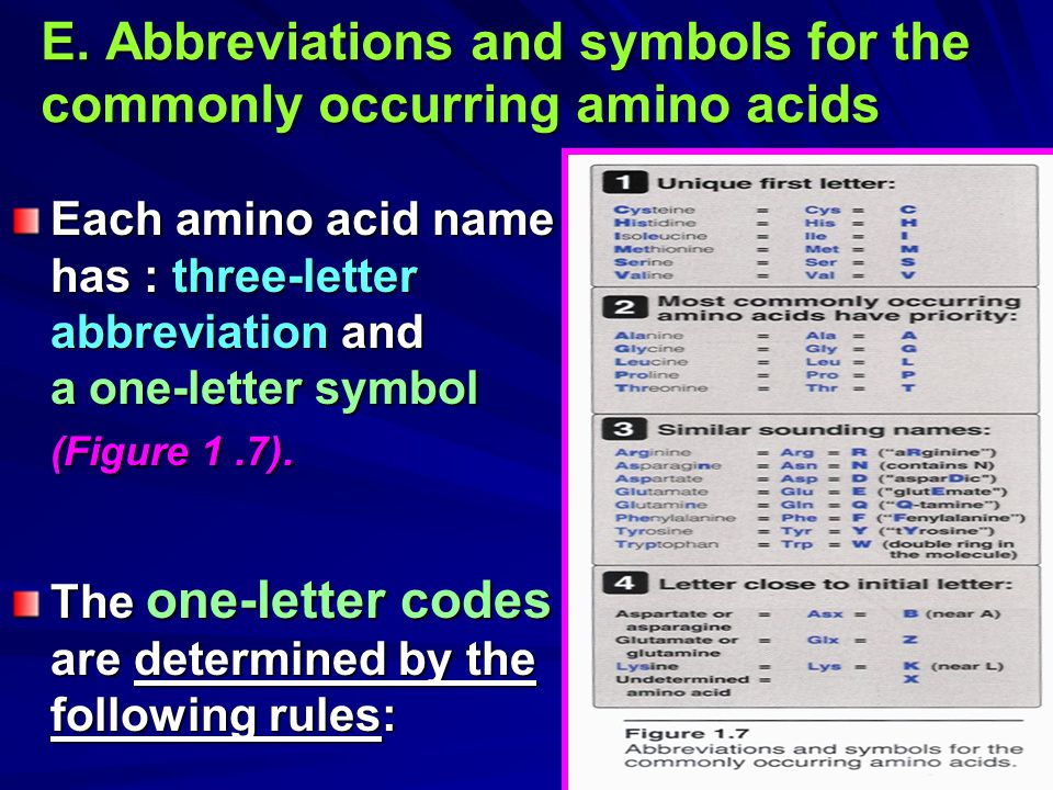 E. Abbreviations and symbols for the commonly occurring amino acids