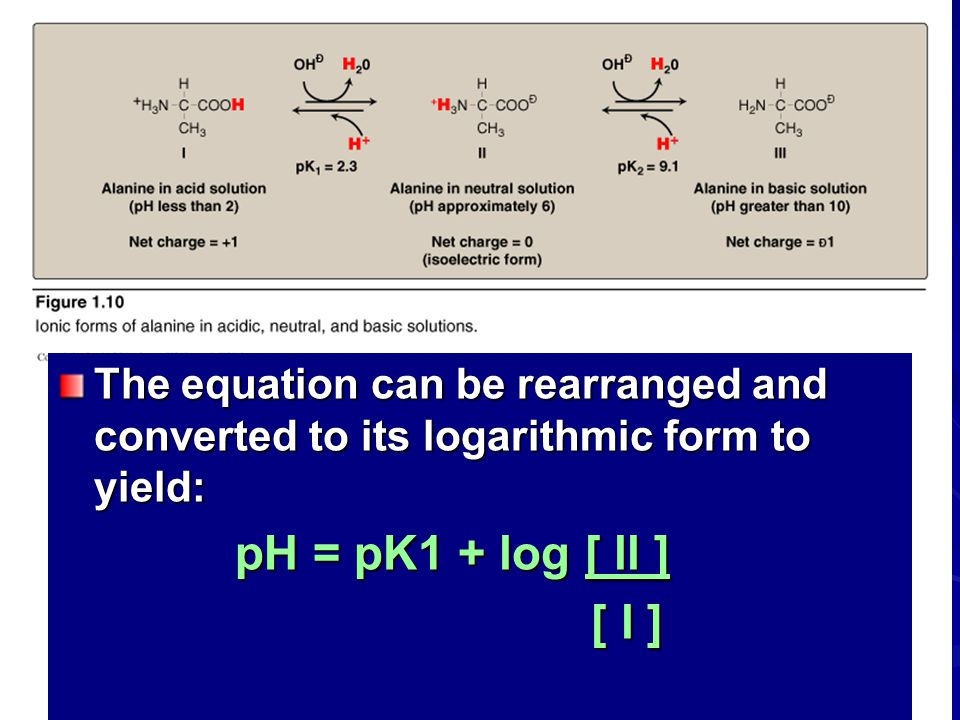 The equation can be rearranged and converted to its logarithmic form to yield: