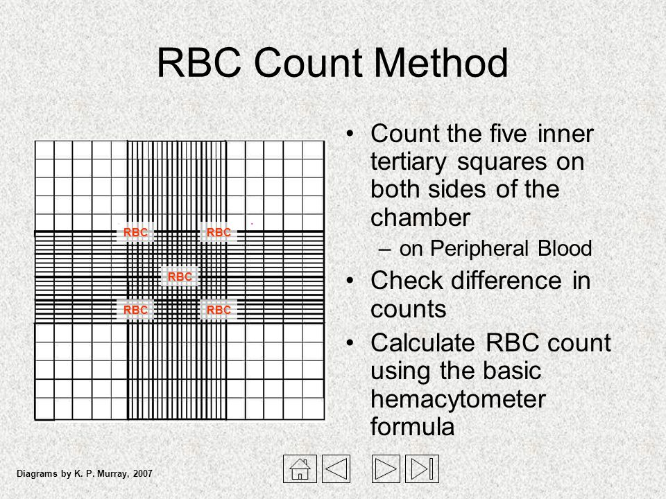 manual hemocytometer rbc count procedure