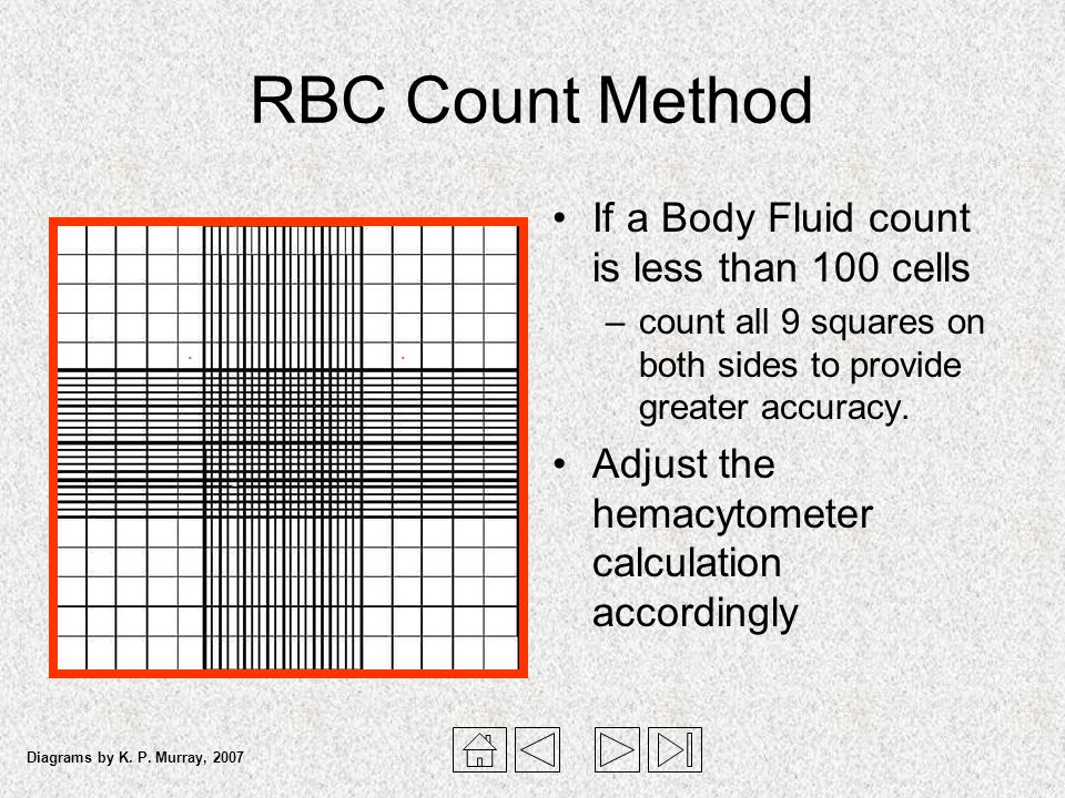 RBC Count Method If a Body Fluid count is less than 100 cells