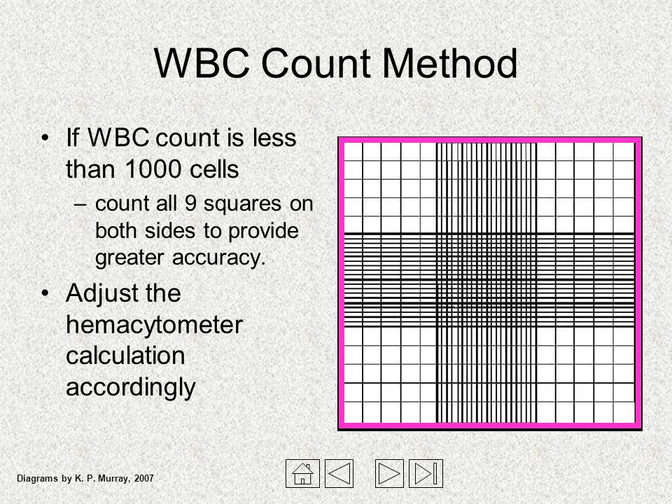WBC Count Method If WBC count is less than 1000 cells