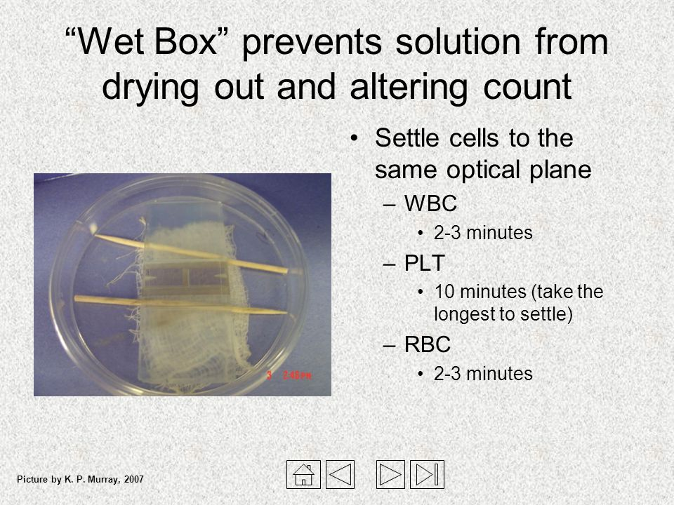 Wet Box prevents solution from drying out and altering count