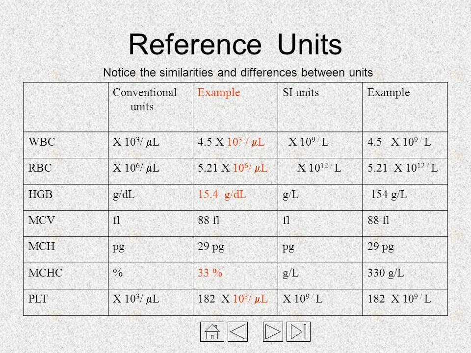 Reference Units Notice the similarities and differences between units