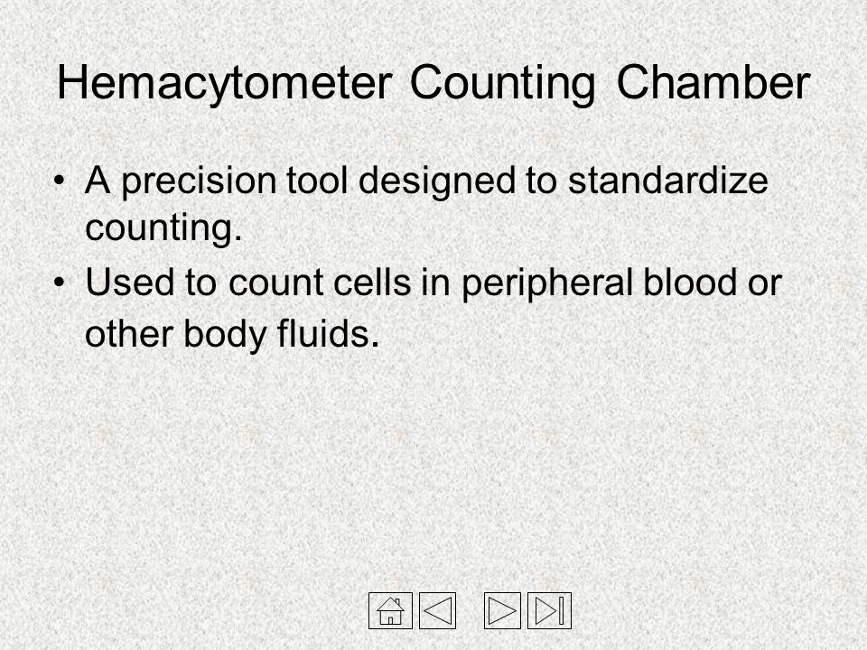 Hemacytometer Counting Chamber