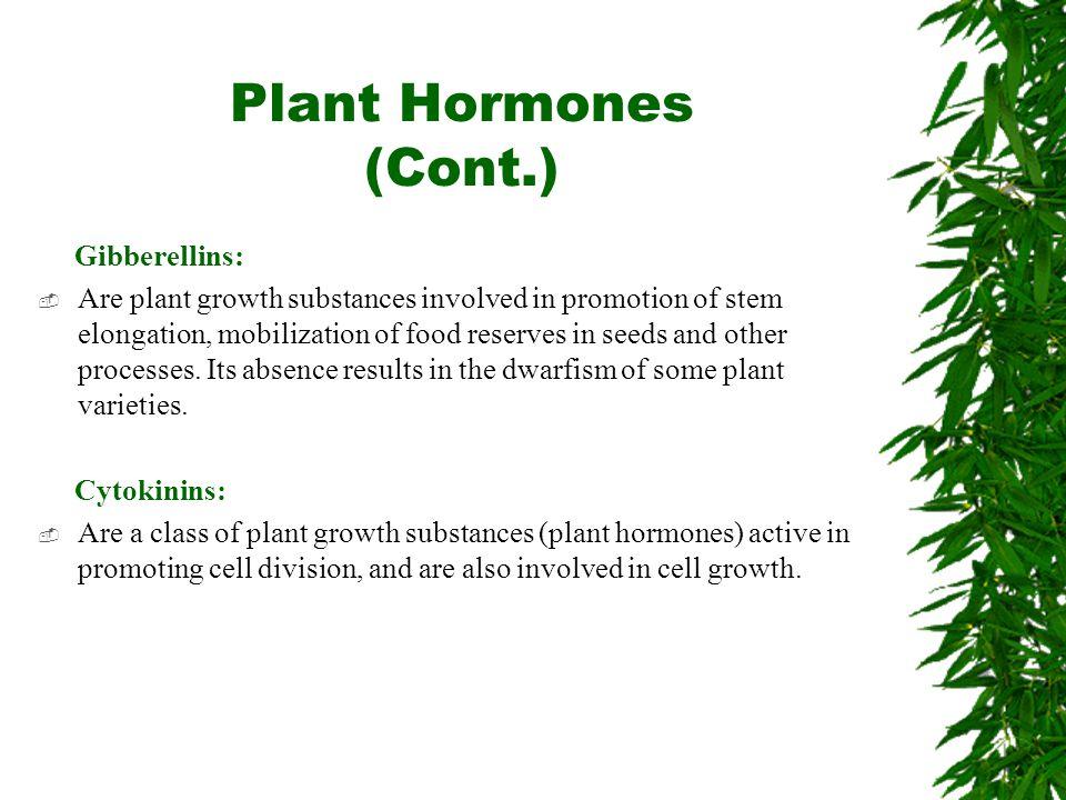 Plant Hormones (Cont.) Gibberellins: