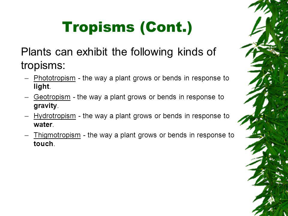 Tropisms (Cont.) Plants can exhibit the following kinds of tropisms: