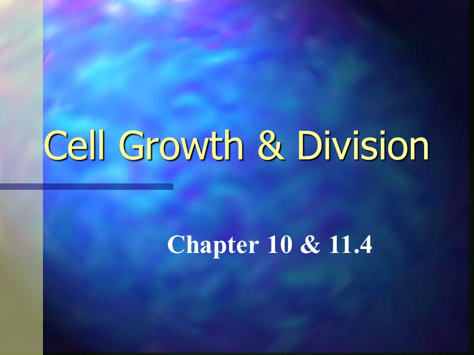 Cell Growth & Division Chapter 10 & 11.4