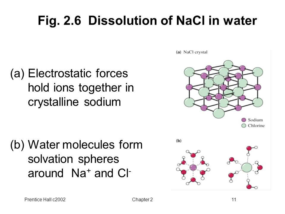 Fig. 2.6 Dissolution of NaCl in water