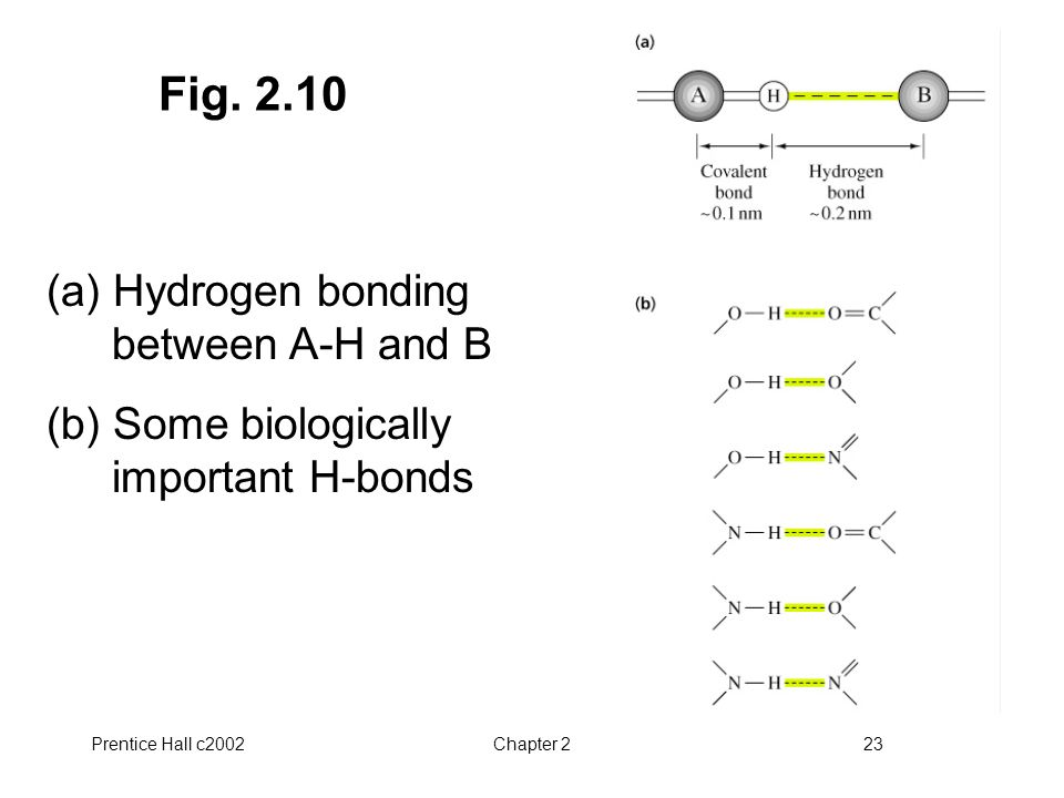 Fig. 2.10 (a) Hydrogen bonding between A-H and B